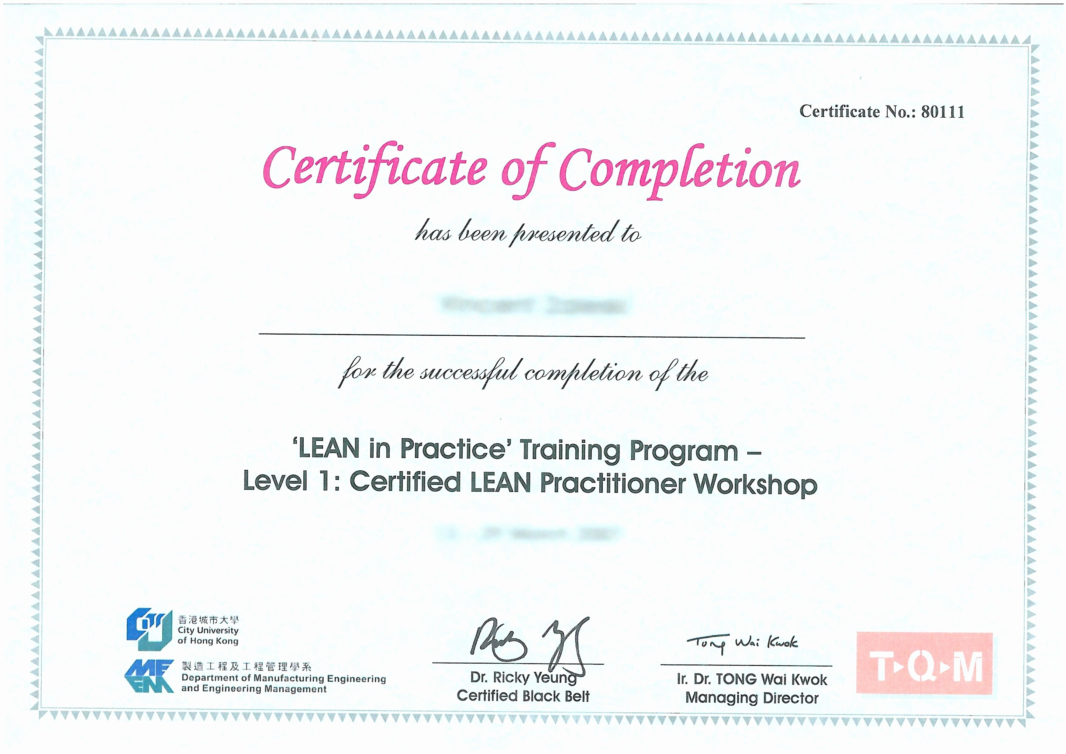 Sample Training Certificate Of Completion Elegant Template Sample Course Pletion Certificate Template