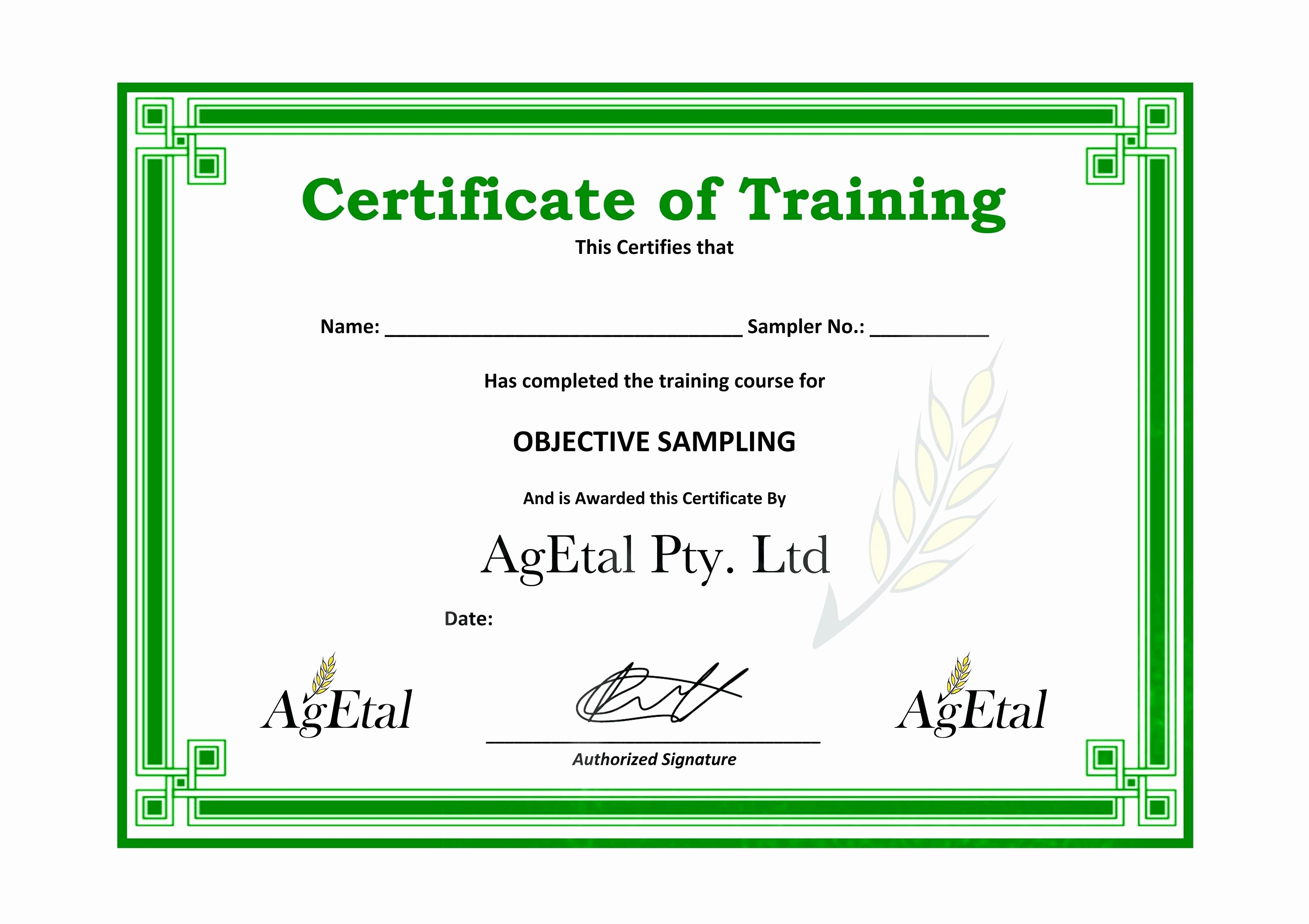 Sample Training Certificate Of Completion Inspirational Downloadable