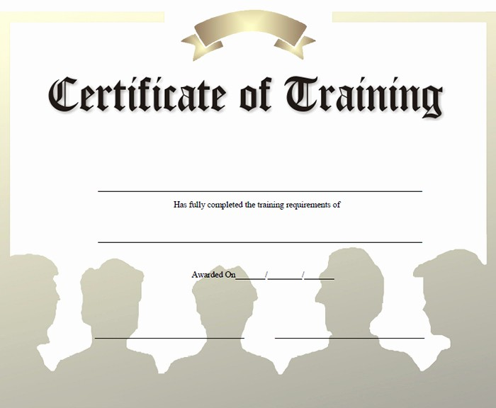 Sample Training Certificate Of Completion Luxury 15 Training Certificate Templates Free Download Designyep