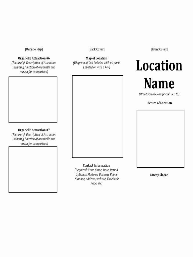 Sample Travel Brochure for Students Fresh Printable Travel Brochure Template for Kids