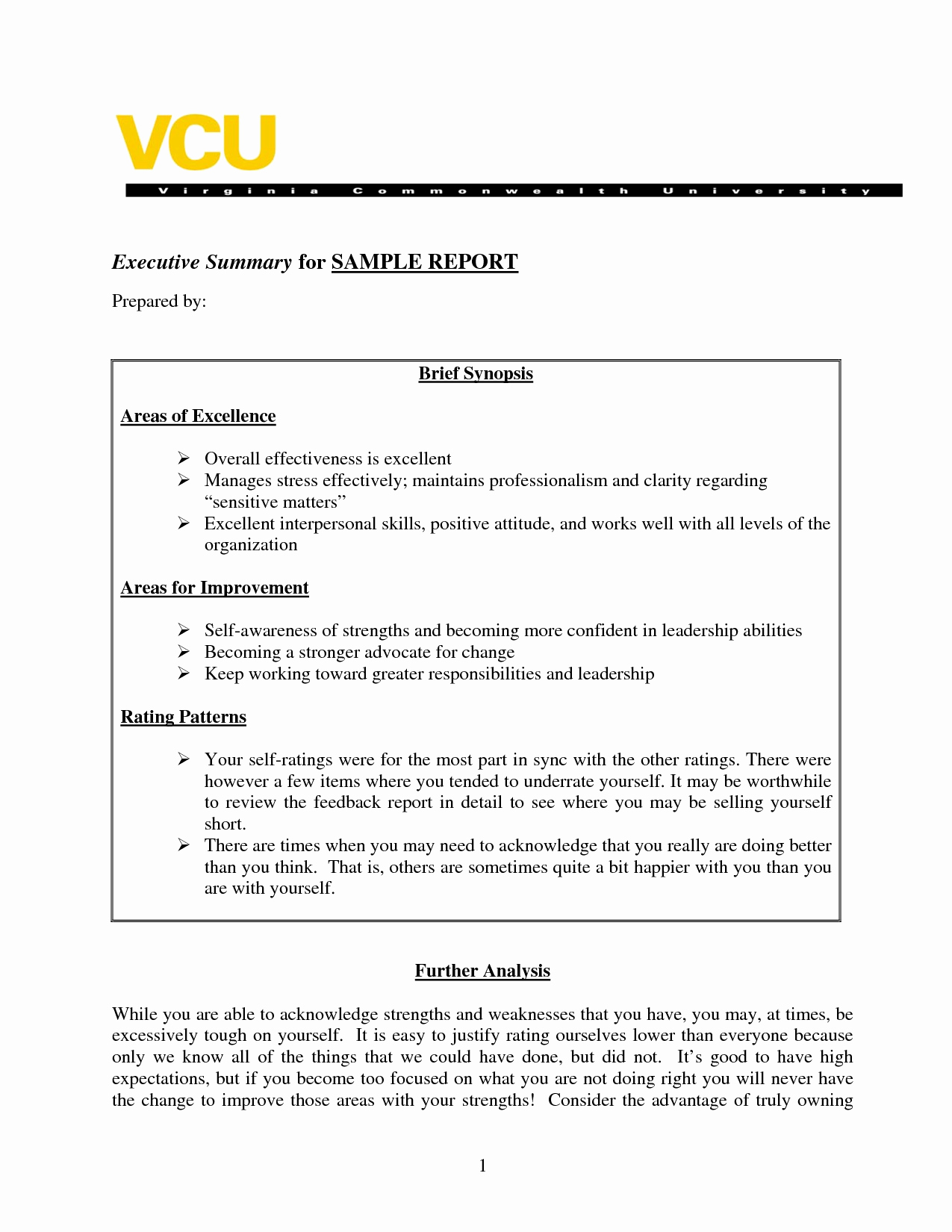 Samples Of Executive Summary Report Beautiful Sample Executive Summary A Report Template Business