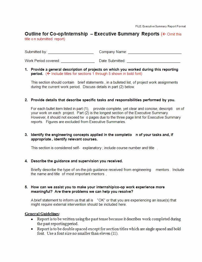 Samples Of Executive Summary Report Best Of 22 Executive Summary Samples Pdf Doc