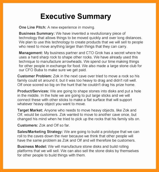 Samples Of Executive Summary Report Lovely 9 10 Samples Of Executive Summary Report