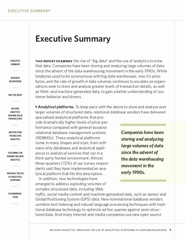 executive summary examples