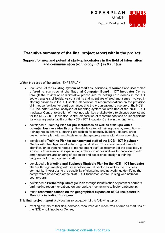 Samples Of Executive Summary Report Luxury Executive Summary Sample for Project Report