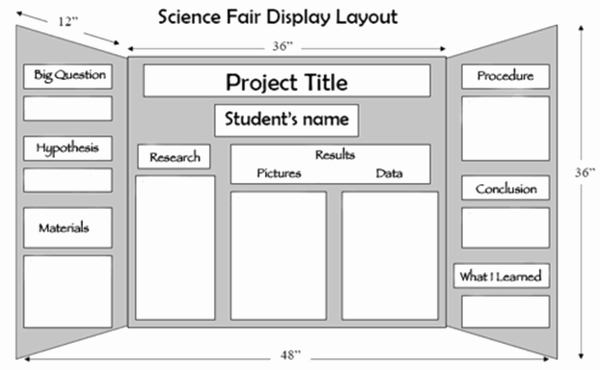 Science Fair Project Template Word Beautiful Science Fair Ideas Line Signup Blog by Signup