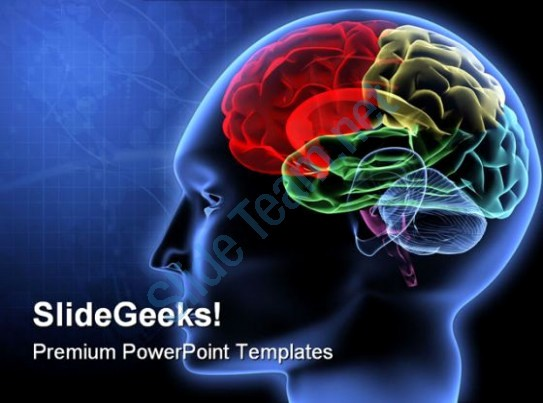 Science Powerpoint Templates Free Download Luxury Brain Powerpoint Templates Free Digital Brain