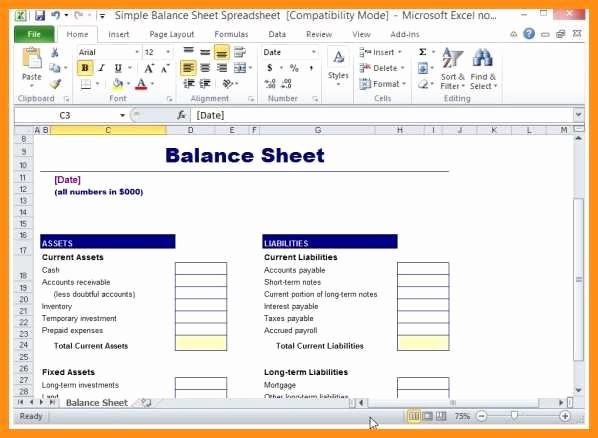 Simple Balance Sheet format Excel Awesome 6 Sample Balance Sheet Excel Free