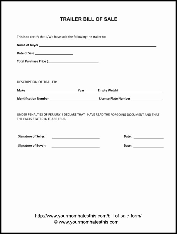 Simple Bill Of Sale forms Awesome Download Bill Sale form Pdf