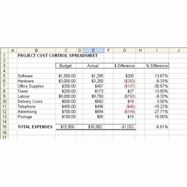 Simple Project Management Template Excel Inspirational Project Bud Template