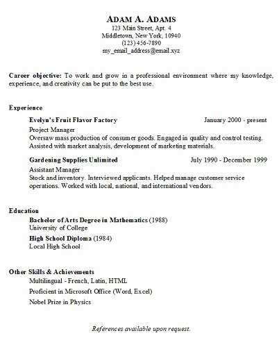 Simple Resume Examples for Jobs Elegant Simple Job Resume Examples