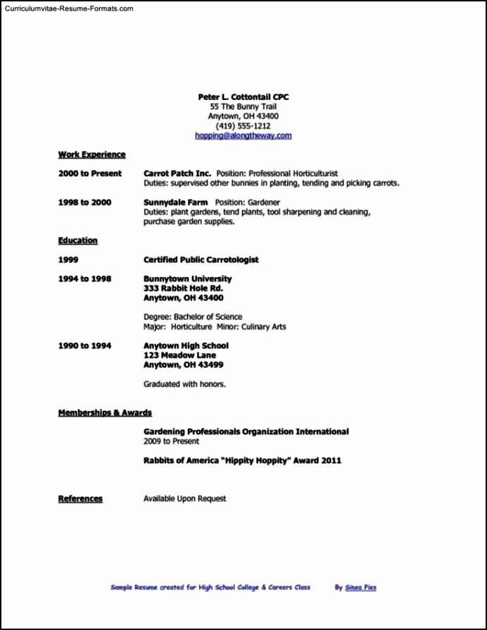 Simple Resume Template for Students Unique Simple Resume Template for High School Students Free