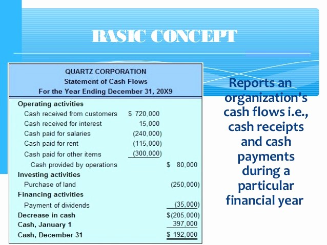 Simple Statement Of Cash Flow Beautiful Cash Flow Statement with Examples