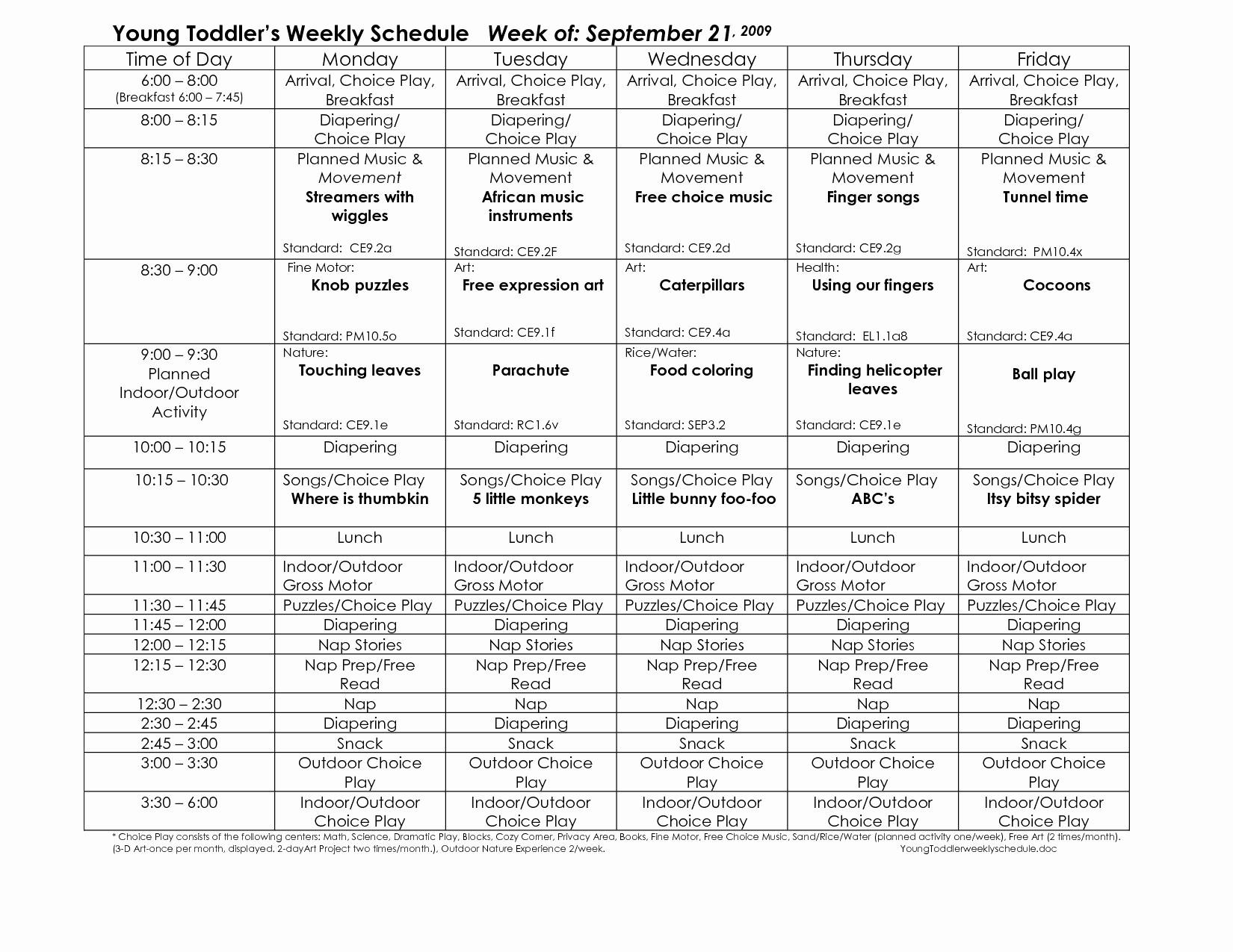 Single Subject Lesson Plan Template Elegant Genuine Preschool Daily Lesson Plan