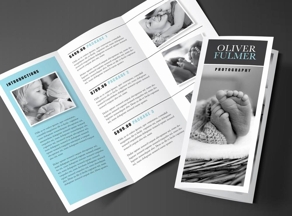 Size Of Tri Fold Brochure Best Of Tri Fold Brochure Template Blue Serenity Rumble Design S