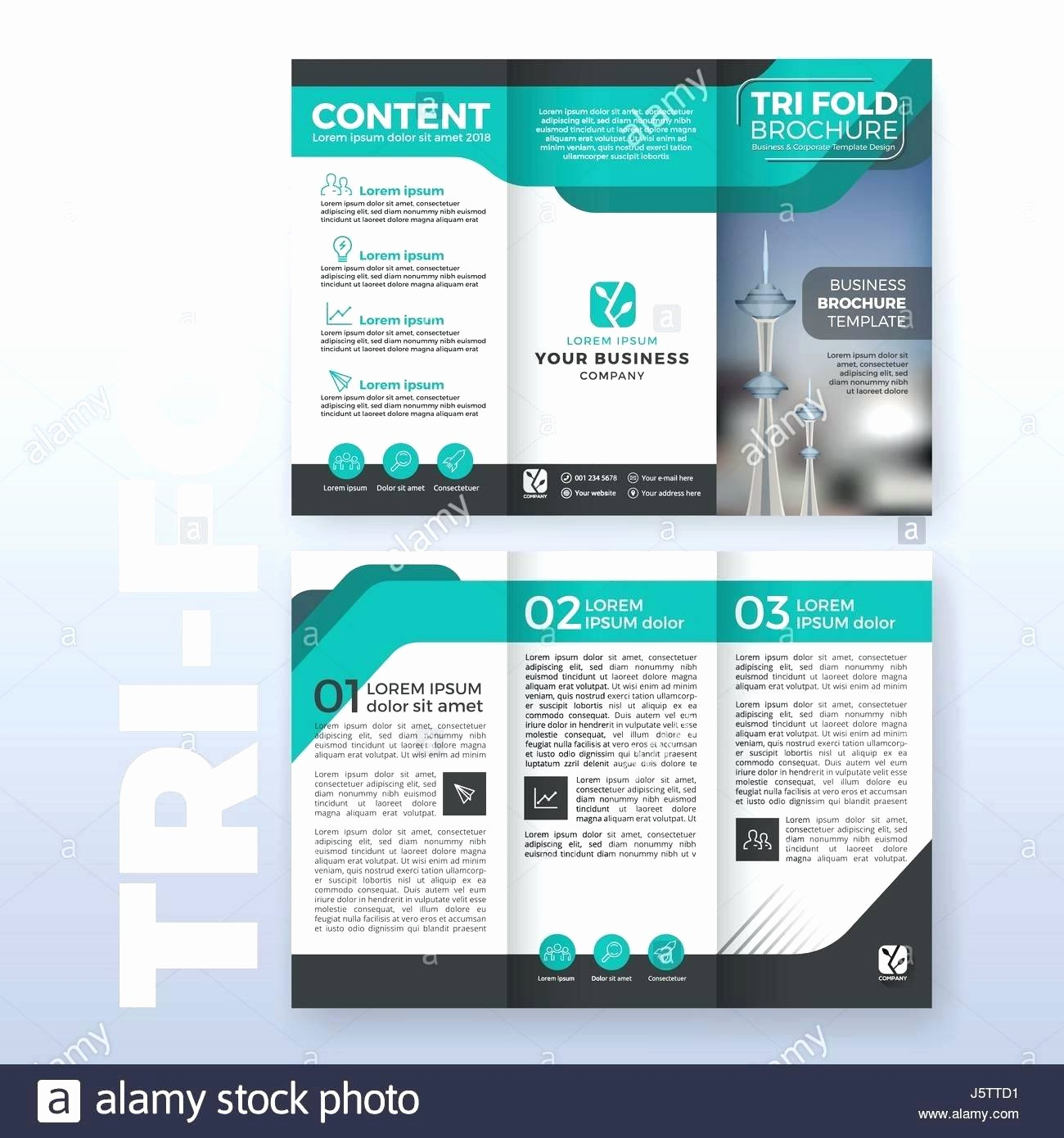 Size Of Tri Fold Brochure Inspirational Legal Size Tri Fold Brochure Template