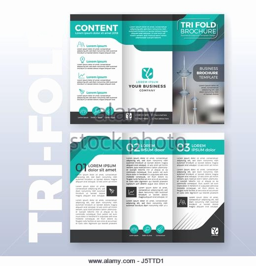 Size Of Tri Fold Brochure Lovely Cartoon Brochure Trifold Template Design Editable A4 Size