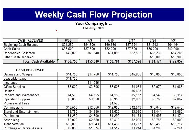 Small Business Cash Flow Projection Beautiful Cash Flow Template
