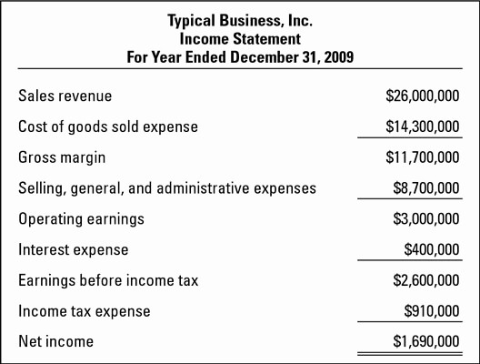 Small Business Income Statement Example Awesome How to Read An In E Statement Dummies