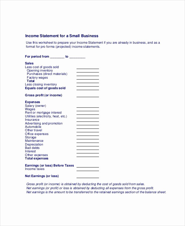 Small Business Income Statement Example Unique In E Statement Free Pdf Excel Word Documents