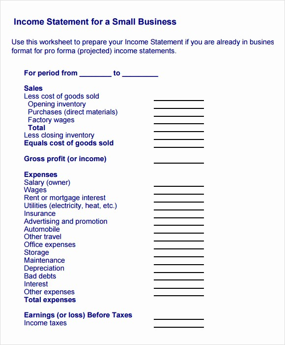 Small Business Income Statement Template Lovely 10 Sample In E Statements