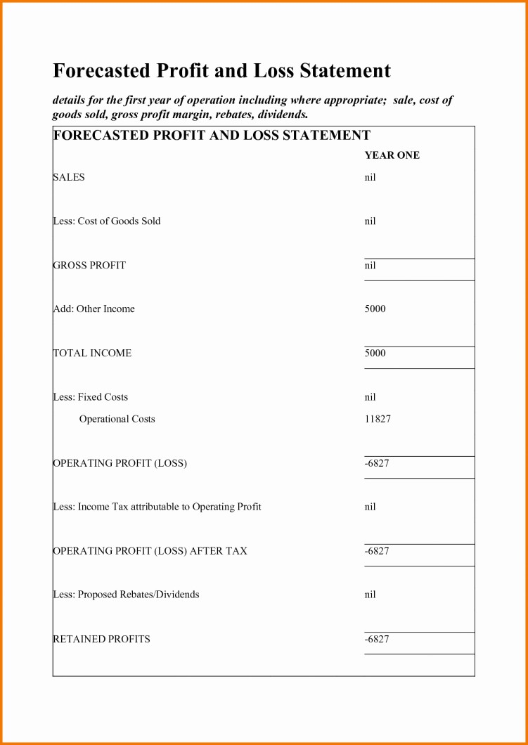 Small Business Income Statement Template Luxury Small Business In E Statement Template Profit and Loss