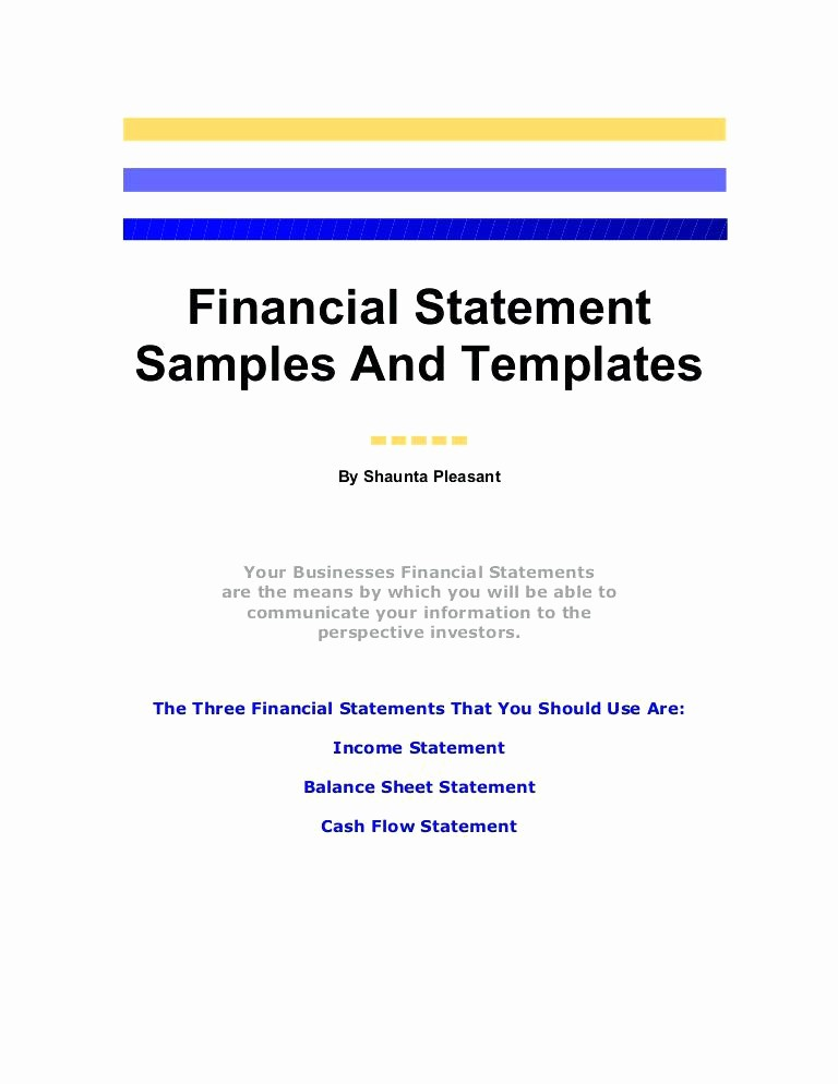 Small Business Income Statement Template New Sample Balance Sheet Statement Financial Position