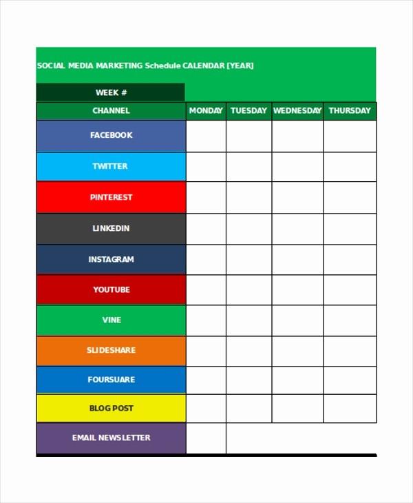 Social Media Post Schedule Template Beautiful 35 Schedule Templates