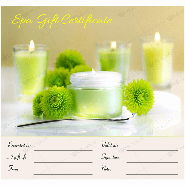 Spa Gift Certificate Template Free Best Of Gift Certificate 17 Word Layouts