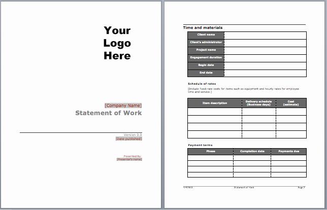 Statement Templates for Microsoft Word Elegant Statement Of Work Template Microsoft Word Templates
