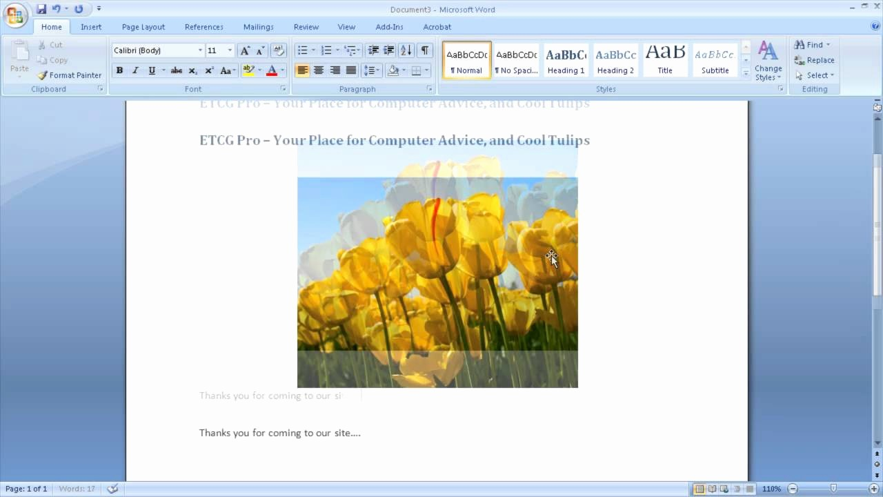 Stop Sign Template Microsoft Word Luxury Using Microsoft Word to Build Websites