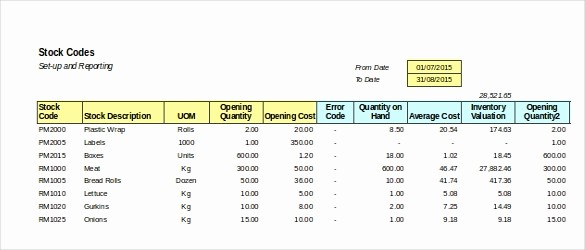 Store Inventory format In Excel Unique 15 Retail Inventory Templates – Free Sample Example