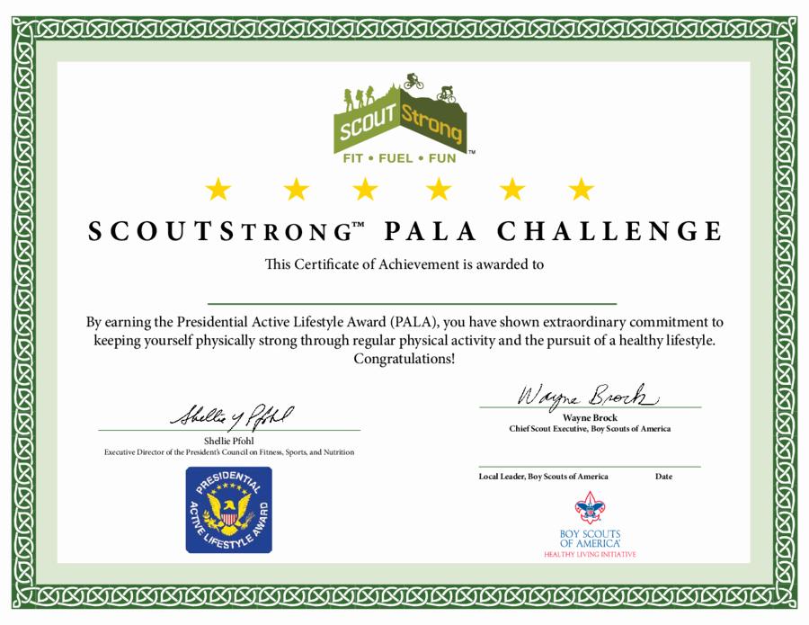 Student Council Award Certificate Template Best Of Student Council Award Certificates Christopherbathum
