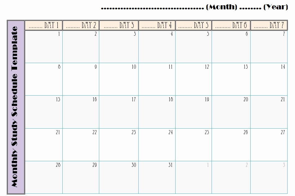 Study Plan Template for Students Beautiful Study Schedule Templates Choice Image Template Design Ideas