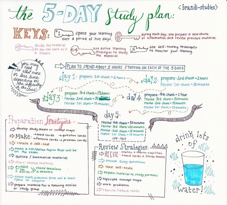 Study Plan Template for Students New Best 25 Study Schedule Ideas On Pinterest
