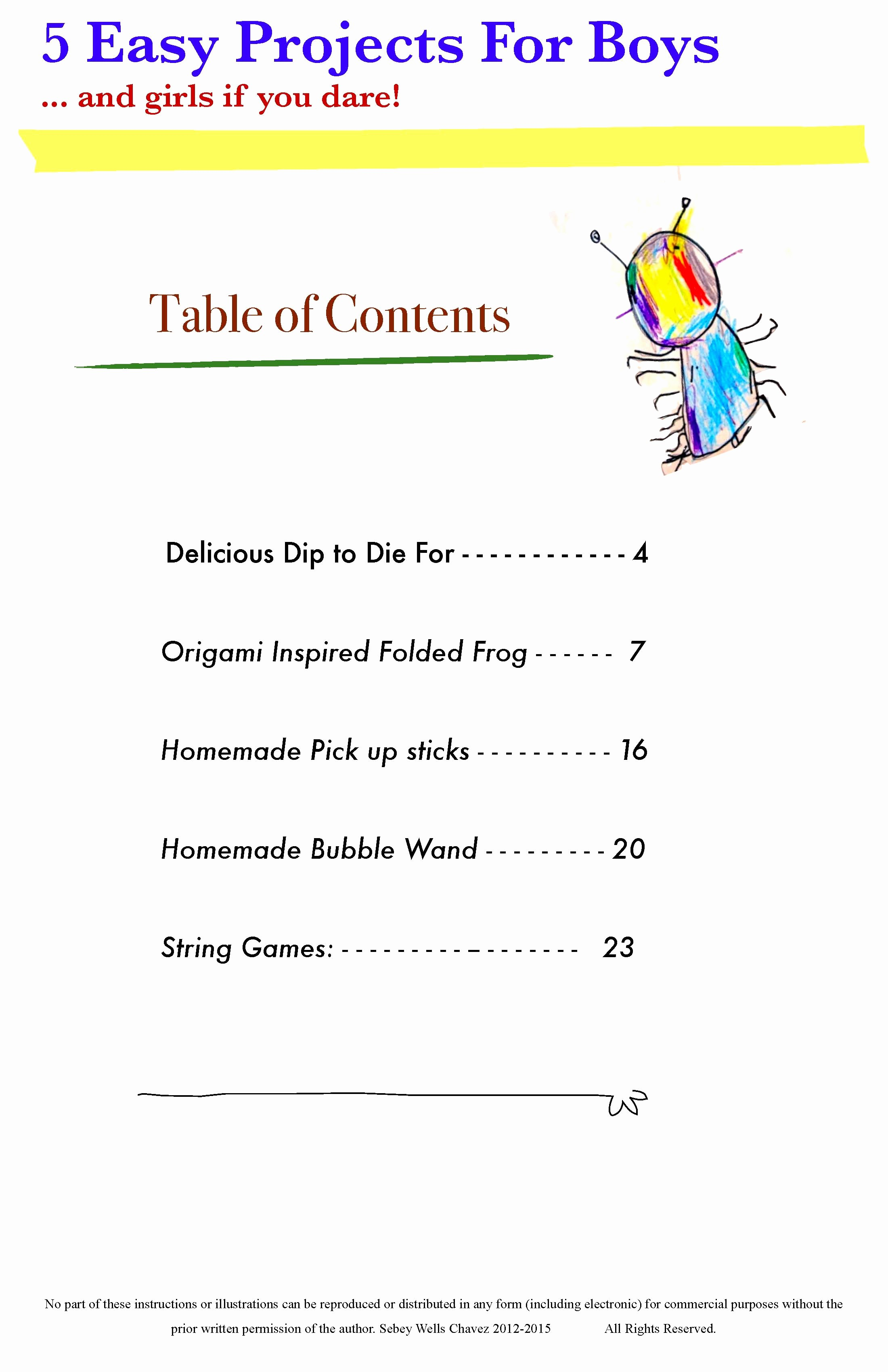 Table Of Contents Sample Page Inspirational Cool Projects for Kids Ebook
