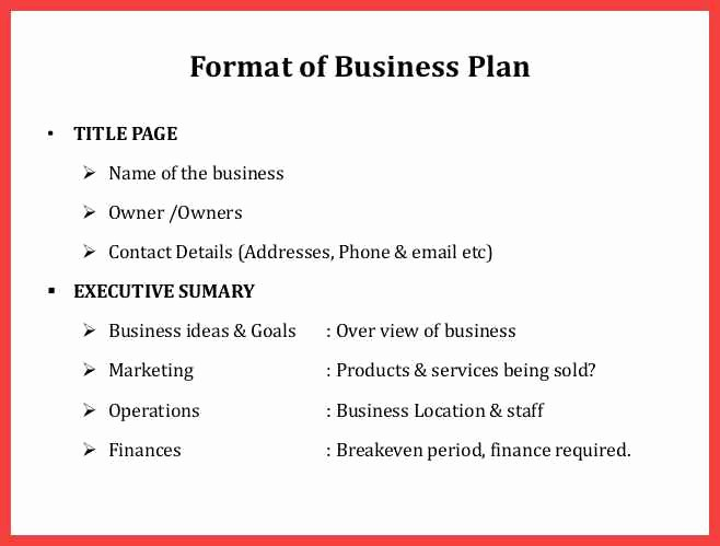 Template for A Business Plan Elegant formal Business Plan format