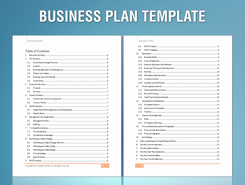 Template for A Business Plan Luxury Sample Business Plan