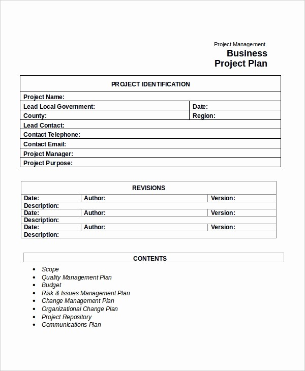 Template for A Project Plan Lovely Project Plan Template 10 Free Word Pdf Document