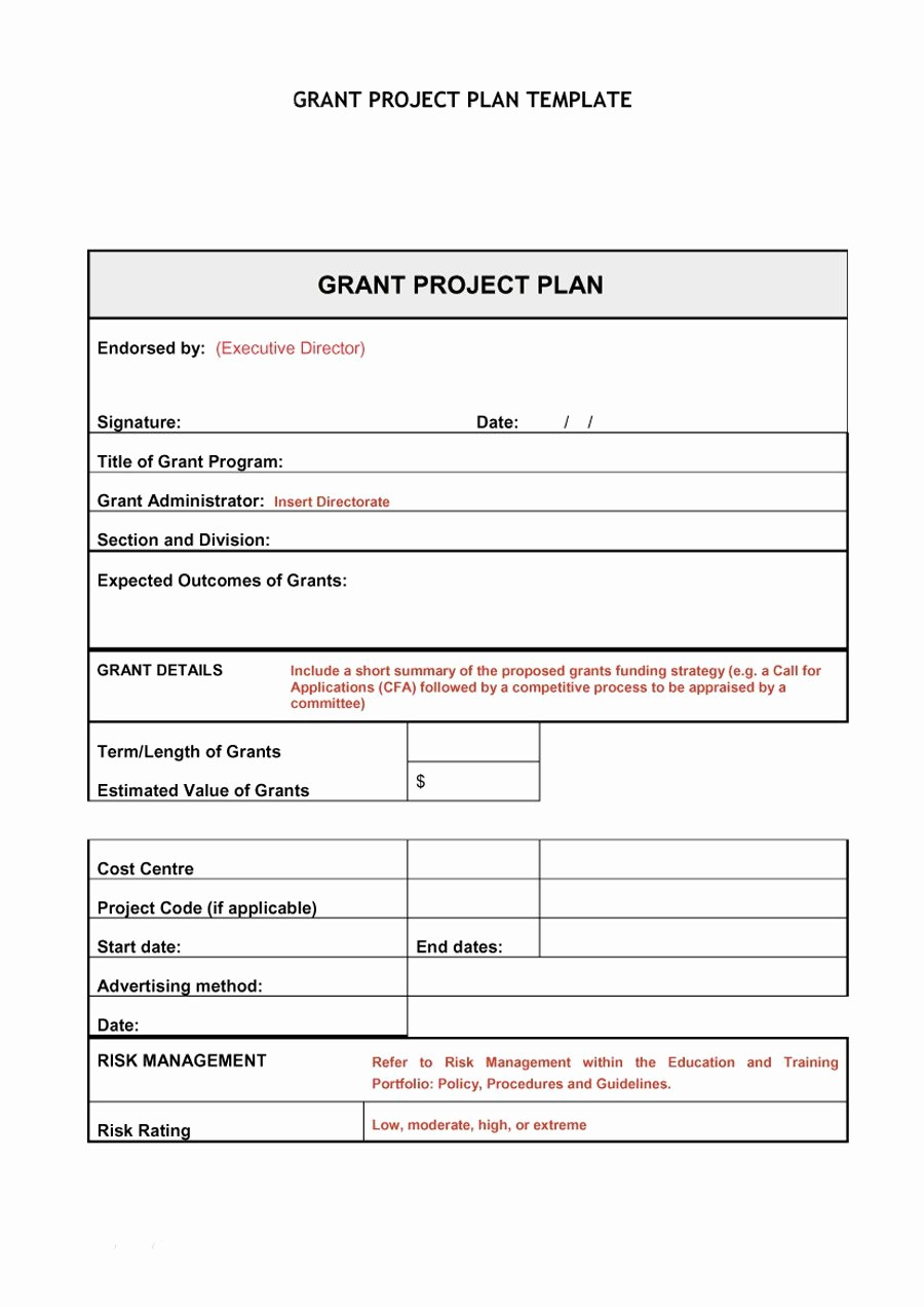 Template for A Project Plan Luxury 48 Professional Project Plan Templates [excel Word Pdf