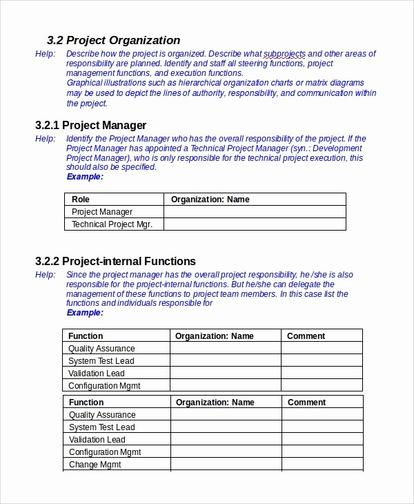 Template for A Project Plan Unique 7 It Project Plan Templates