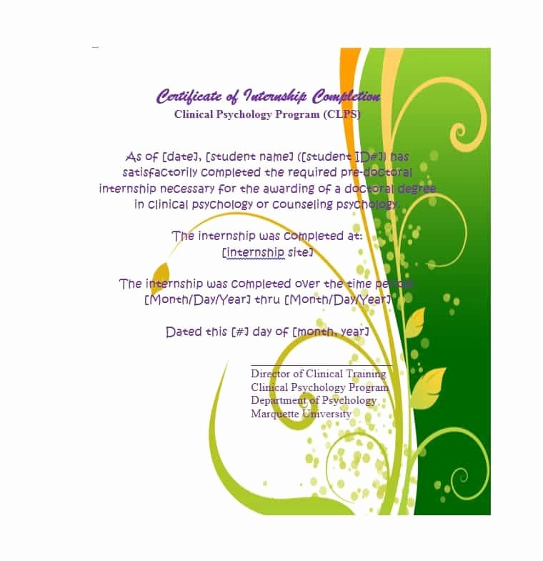 Template for Certificate Of Completion Awesome 40 Fantastic Certificate Of Pletion Templates [word