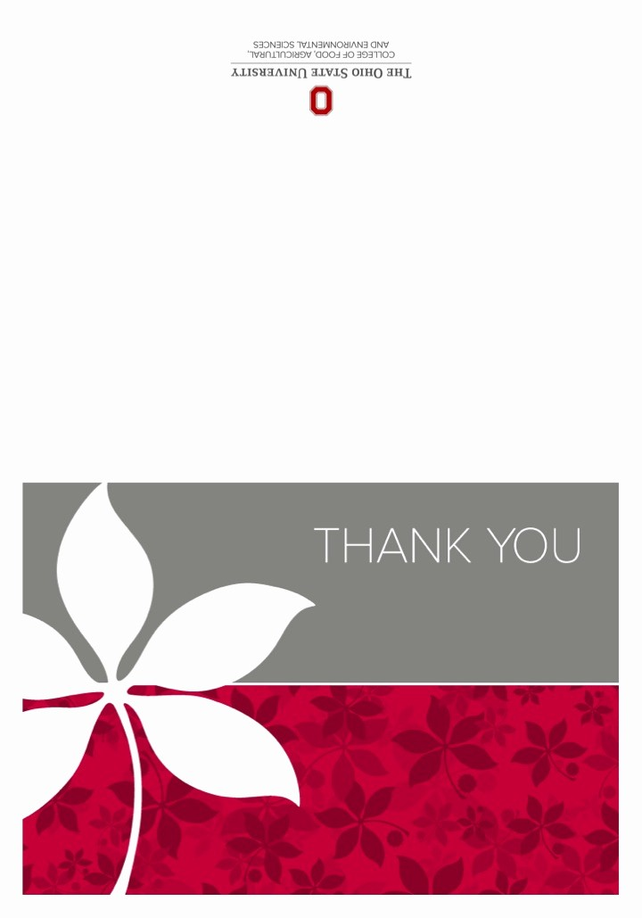 Template for Thank You Card Best Of Thank You Card Templates