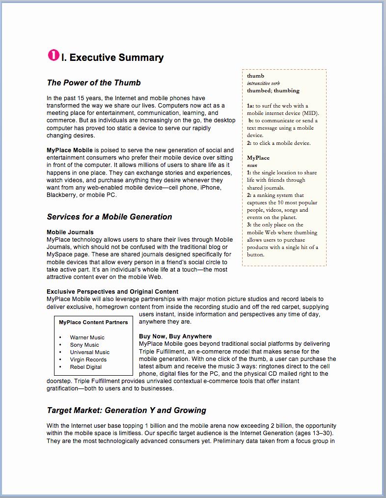 Template Of A Business Plan Fresh Sample Business Plan