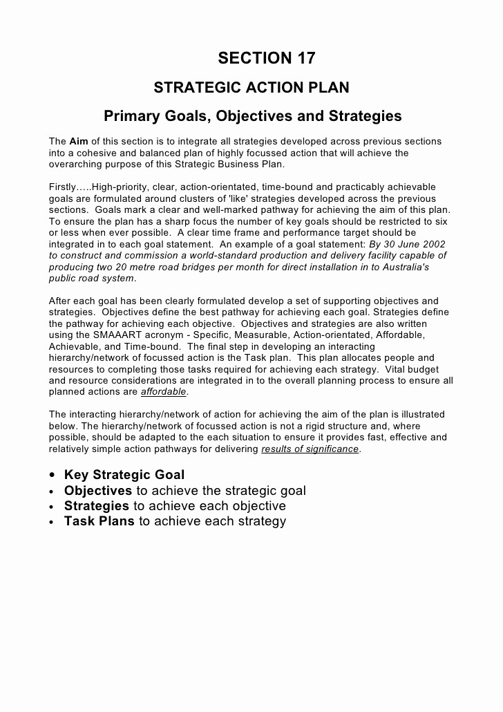 Template Of A Business Plan New 5 Prehensive Strategic Business Plan Template