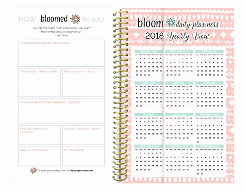 bloom daily planners 2017 calendar year daily planner passion goal organizer monthly weekly agenda datebook diary january 2017 december 2017 6 x 8 25 mint damask