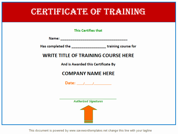 Training Certificate Template Free Download Elegant Training Certificate Template