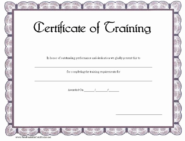Training Certificate Template Free Download Inspirational 15 Training Certificate Templates Free Download Designyep