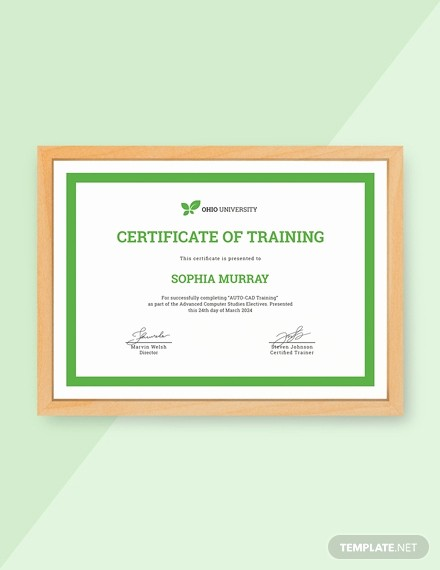 Training Certificates Templates Free Download Elegant 13 Free Training Certificate Templates