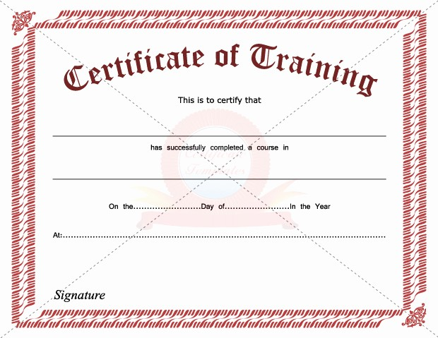Training Certificates Templates Free Download Elegant 8 Best Of Hours Training Certificate Template